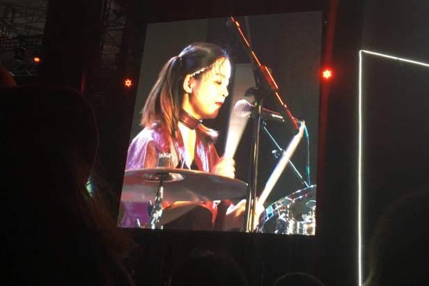hedgehog drummer.jpg