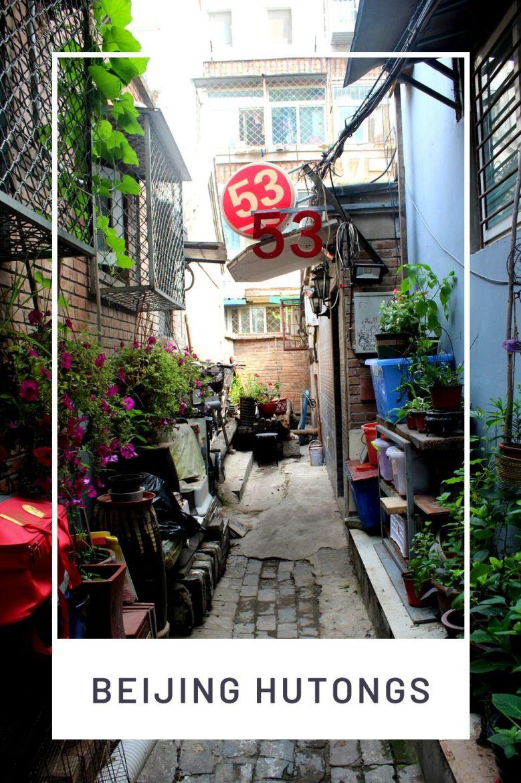 exploring the beijing hutongs